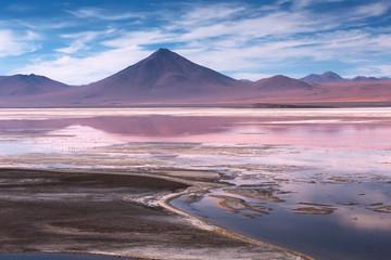 Colorada lagoon with flamingos on the plateau Altiplano, Eduardo Avaroa Andean Fauna National Reserve, Bolivia