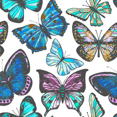vector colorful background with butterflies