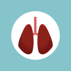 lungs organ human image vector illustration eps 10
