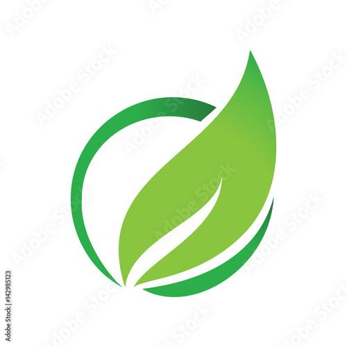 Купить Life Circle Leaf