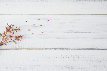 Pink star fruit flowers on white wood background from top view with copy space