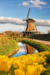 Spoed Foto op Canvas Amsterdam Traditional Dutch windmill with tulips in Zaanse Schans, Amsterdam area, Holland