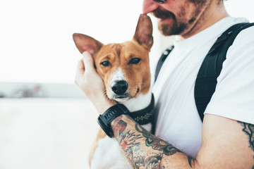 Young trendy hipster with tattoos crazy curly hair with his best friend a little pet dog basenji breed stands in the urban environment overlooking the city skyline after workout