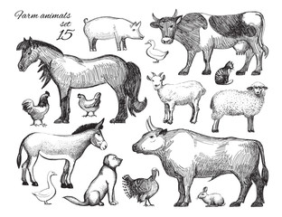 Farm Animals doodle set for domestic fauna design. Hand drawn cow, horse, cat, sheep, chicken, rooster, hen, duck, turkey, goat, rabbit, dog, donkey, pig, beef, goose isolated on white. Vector