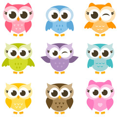 Fotobehang Uilen cartoon set of cute colorful owls isolated on white background