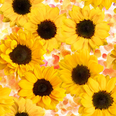 Seamless pattern with yellow sunflowers on watercolor texture