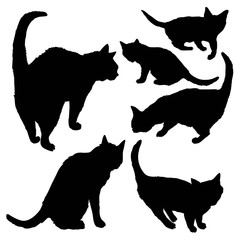 cat silhouette, animal, vector, illustration, black, insulated