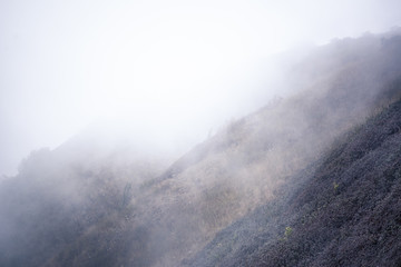 view of mountain forests covering by fog for background