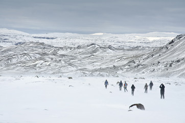 group of young people walking in rough Iceland nature