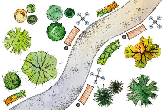 Set of hand drawn watercolor pictorial landscape design elements: different types of green,orange trees,shrubs,lanterns,benches and snaky sidewalk,isolated on the white background for landscape design