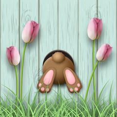 Easter motive, bunny bottom, pink tulips and fresh grass on blue wooden background, illustration