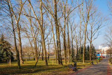 Beautiful park in the center of the city in sunny weather in early spring
