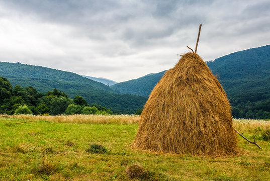 haystack near orchard on hillside