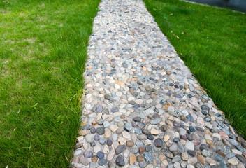 stone walkway through the garden