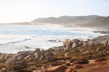 Vue depuis Cape Point