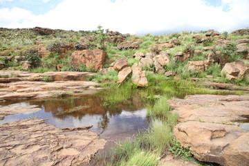 Paysage d'afrique du Sud