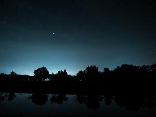 starry night near swamp