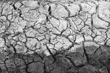 Arid nature. Closeup Crack soil black and white texture background.