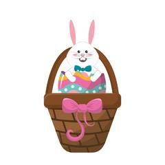 white rabbit inside egg and brown hamper