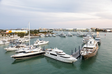 Fototapete - Marina in Miami, Florida