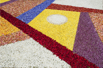 Abstract flower carpet at the festival of Corpus Christi, La Orotava, Tenerife, Canary Islands