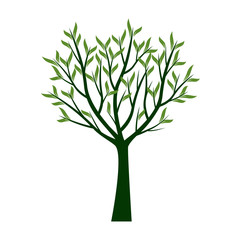 Green Trees with Leafs. Vector Illustration.