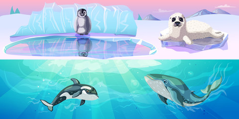 Colorful Arctic Animals Horizontal Banners