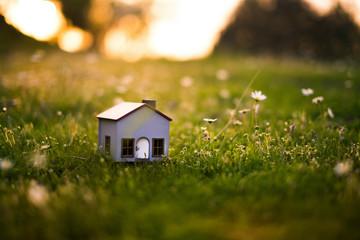 Model house in meadow.