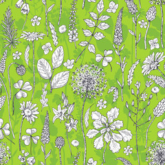 Seamless pattern with wildflowers on green