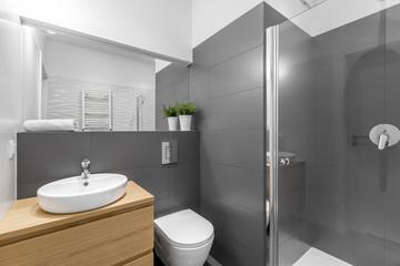 Modern grey bathroom with shower