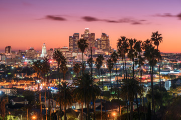 Foto op Plexiglas Los Angeles Beautiful sunset of Los Angeles downtown skyline and palm trees in foreground