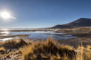 Aguas calientes landscape