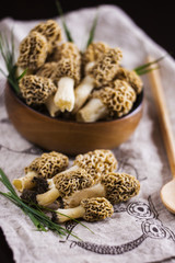 Fine cuisine Morchella esculenta, commonly known as common morel, morel, yellow morel, true morel, morel mushroom, and sponge morel