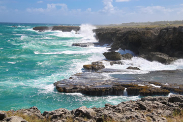 The north point of the island Barbados (Animal Flower Bay)