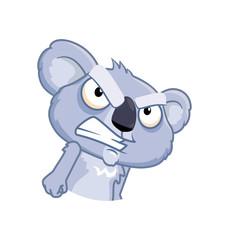 Feisty Koala