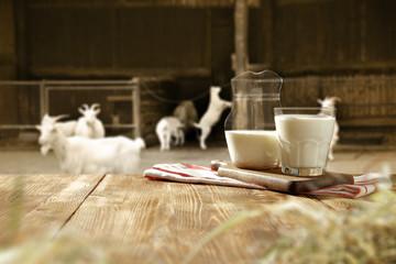 Fototapete - goat milk