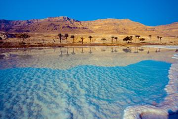 Fototapete - Dead sea salty shore. Wild nature