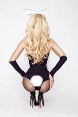 Sexy model dressed in costume Easter bunny, standing on a white background and sensually posing