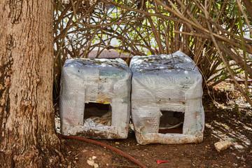 Ariel - 9 December, 2016: Cat house for homeless cats