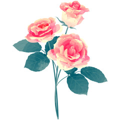 rose - birth flower vector illustration in watercolor paint textures