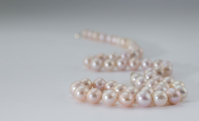 Pink pearl necklace on white background