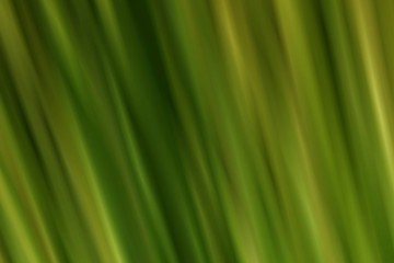 Abstract fractal blurred background in green muted color