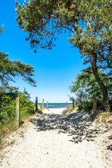 Entrance to the beach sea in the summer, landscape..