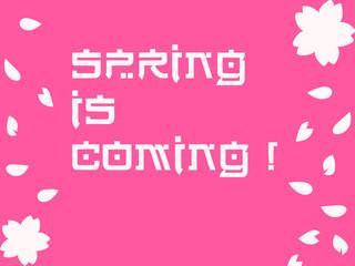 Asian Easter Shocking Pink