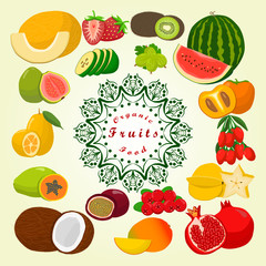 Abstract vector illustration logo:melon,strawberries,kiwi,watermelon,persimmon,pomegranate,coconut, strawberry,passion fruit,goji berry,guava,cranberry,gooseberry,kumquat,feijoa,papaya,carambola,mango