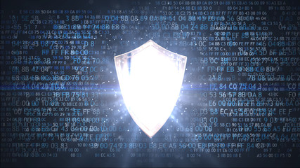 Protection of personal data. Network protection shield