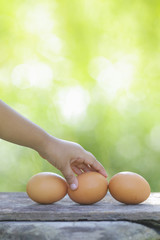 Kids holding a Egg on wooden table with shallow DOF green background.