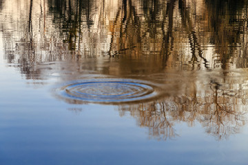 circles and reflection on calm water surface