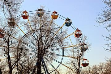 Колесо обозрения в весеннем парке