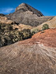 Sandstone Portrait-Nevada